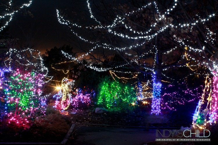 light displays at Christmas at the Zoo
