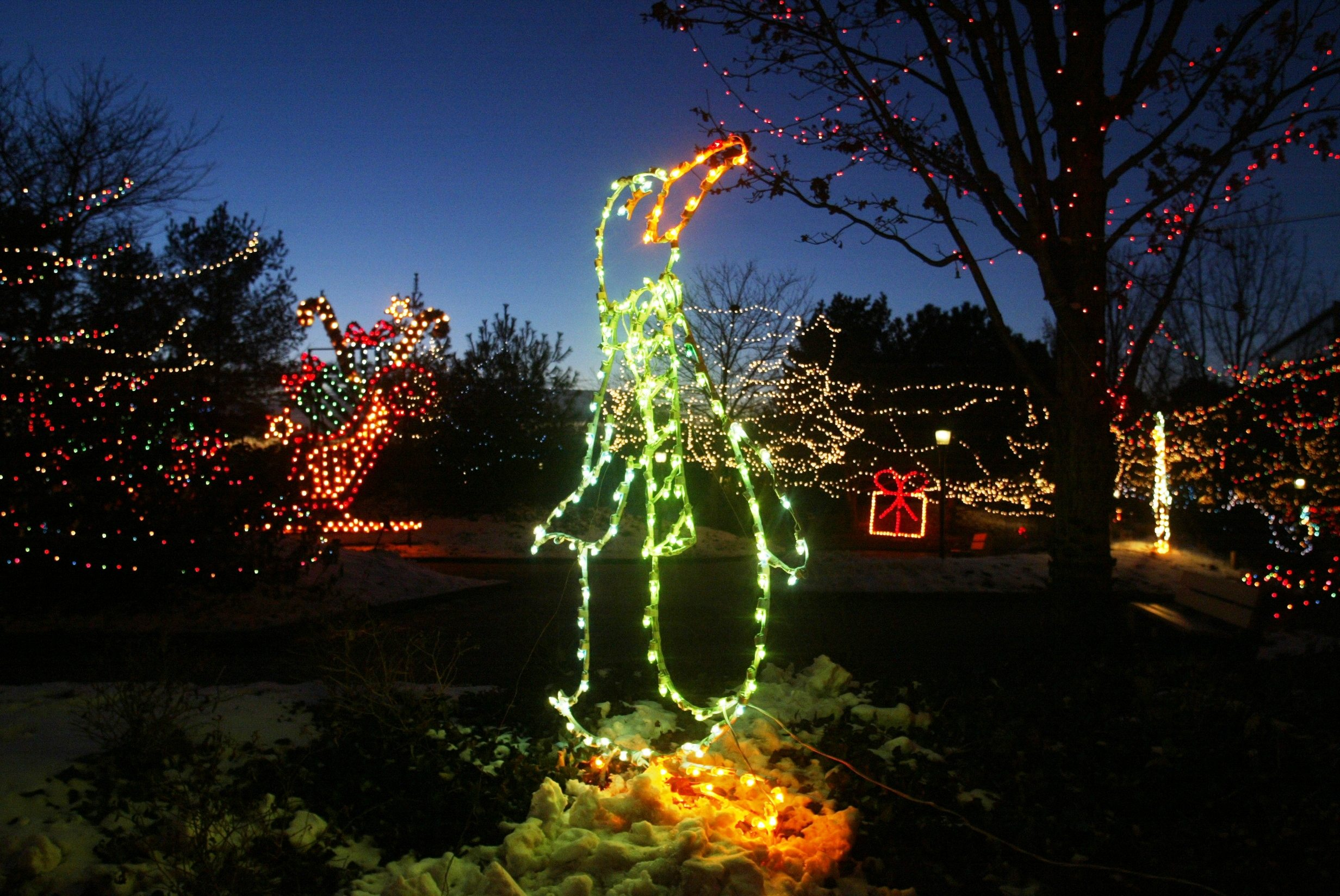 5 Best Spots to view Christmas Lights in Indianapolis | Indy's ...