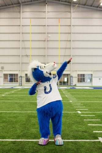 Indianapolis Colts Mascot Blue